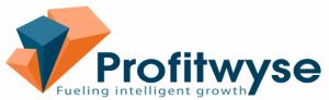 Profitwyse CFO Consulting Services Logo
